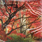 Luncheon Paper Napkin Autumn - Red Tree